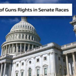 Two GA Senate Seats Up For Grabs | Gun Talk Radio