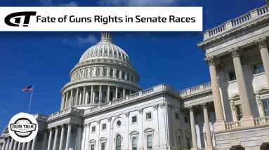 Two GA Senate Seats Up For Grabs | Gun Talk Radio