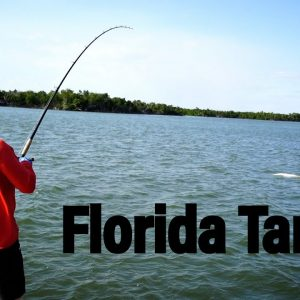MONSTER Florida Tarpon Fishing | Southwest Florida