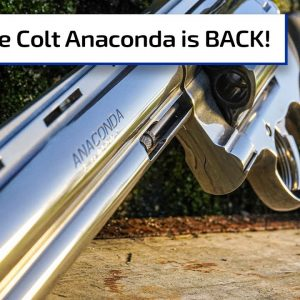 The Colt Anaconda is Back! | Guns & Gear First Look