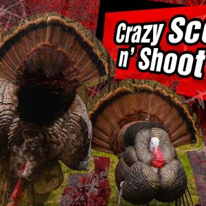 Crazy Scoot N' Shoot Turkey Hunt!! | Wisconsin 2019 Turkey Hunt