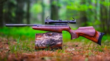 Top 10 Most Powerful Break Barrels Air Rifles