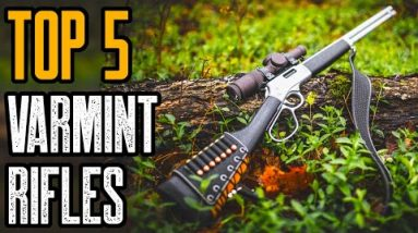TOP 5 BEST PREDATOR AND VARMINT RIFLES IN THE WORLD