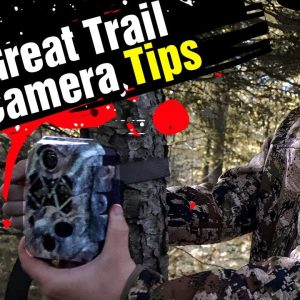 How To Set A Trail Camera | 5 Tips For Beginners